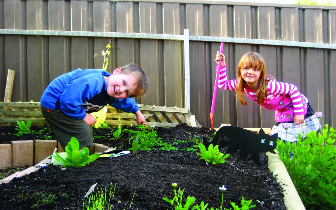 How to make a Keyhole Garden