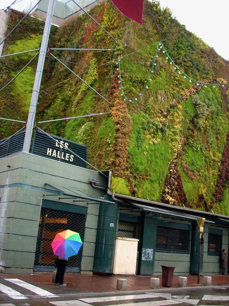 Patrick Blanc green wall
