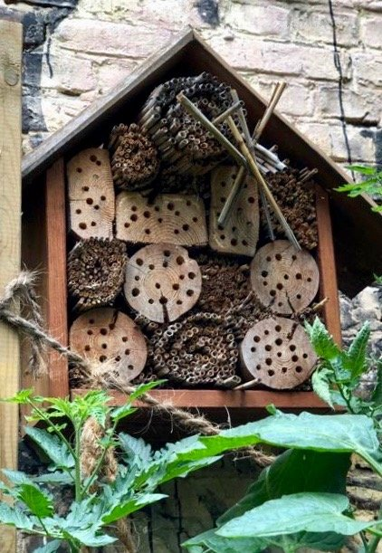 Insect hotel in Berlin