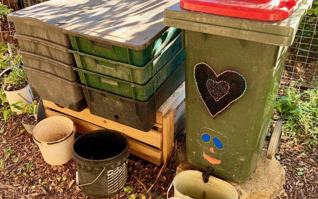 How to convert your trash bin into a worm farm