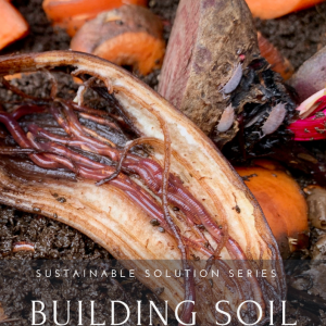 Building Soil with Worms Cover