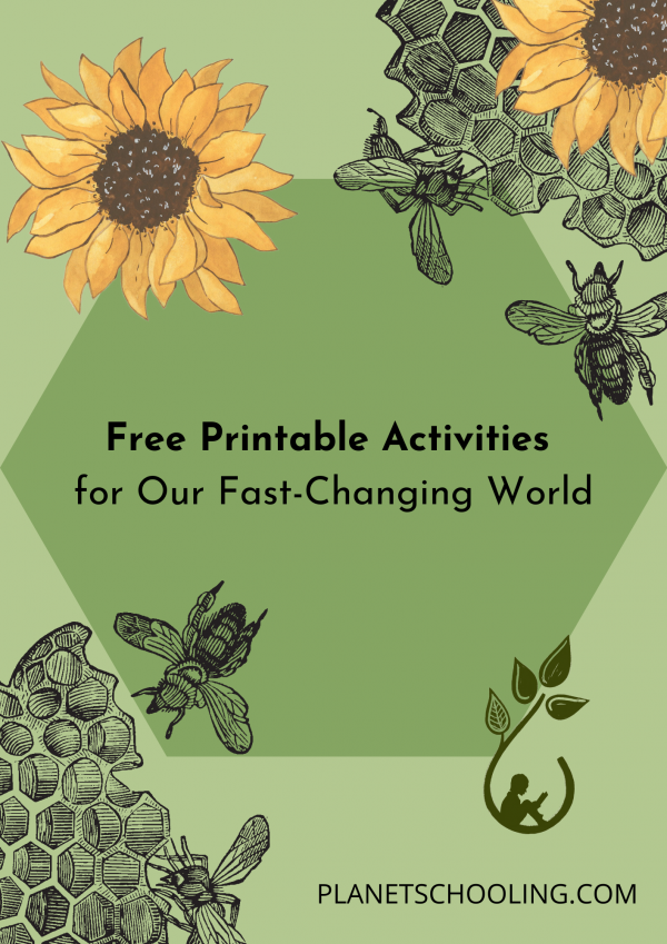 Free Printable Activites Cover