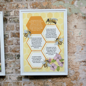 permaculture posters